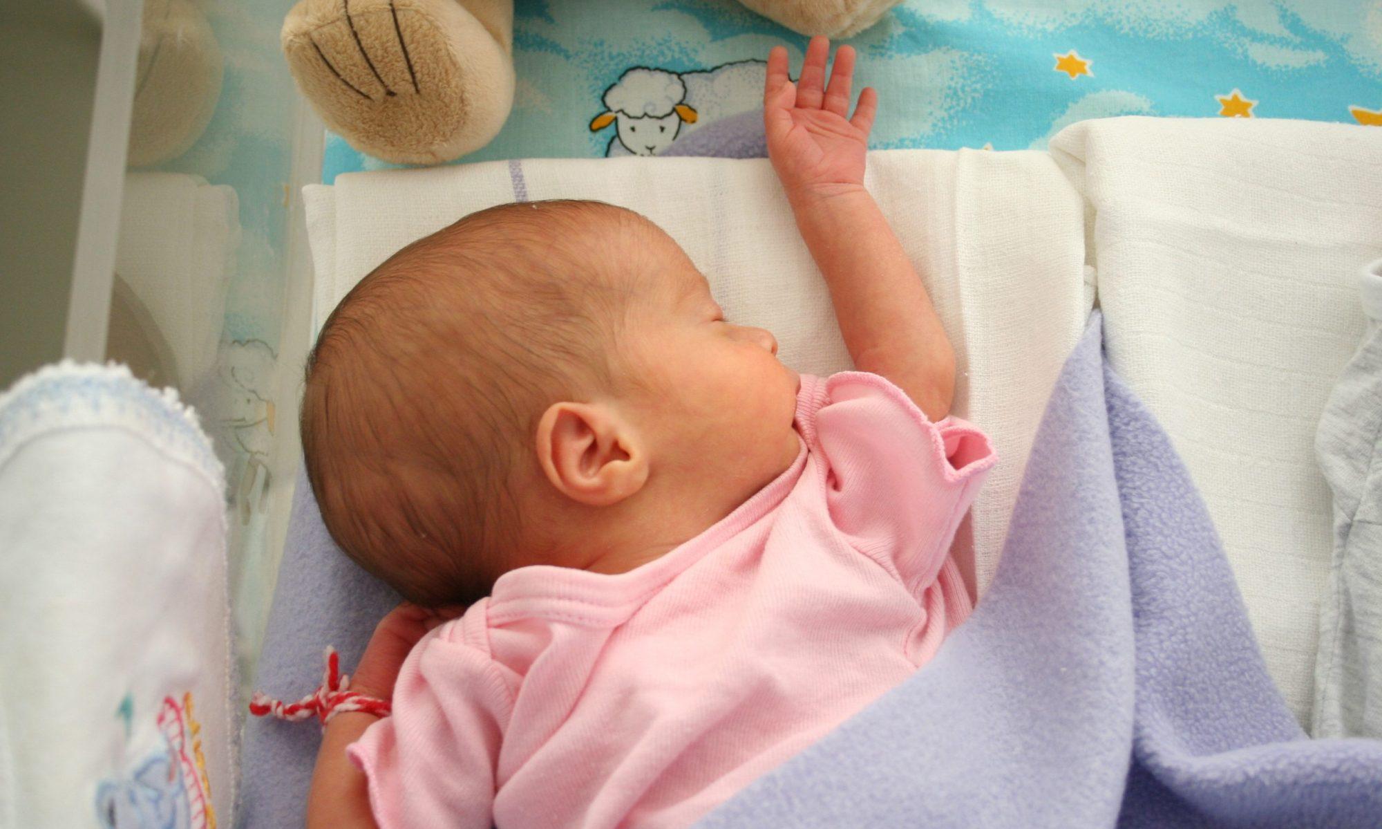 Novorodenec
